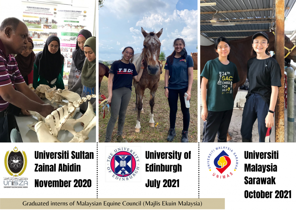 Interns of Malaysian Equine Council